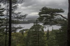 Blick auf die Seen von Killarny