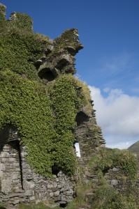 Tag 3 (So): Ballycarbery Castle